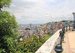 Recorrido de medio día por la ciudad de Guayaquil con el Malecón y Las Peñas,