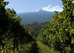 Etna and Wine Tour from Catania. Catania, ITALY