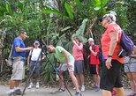 Excursión al Parque Nacional Manuel Antonio. Quepos, COSTA RICA