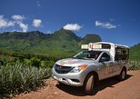 Moorea 4WD Tour with Belvedere Pineapple Farm, Magic Mountain,