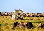 Tanzania, All-Inclusive, 6-Day National Parks Camping Safari. Arusha, Tanzania