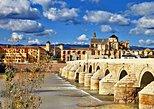 Excursión de día completo a Córdoba con entrada en la Mezquita desde la Costa del Sol. Marbella, ESPAÑA