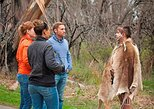Sydney to Blue Mountains Day Trip with Aboriginal Experience. Monta�as Azules, AUSTRALIA