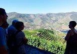 Excursión para grupos pequeños por el valle del Duero con almuerzo y cata de vinos, Oporto, PORTUGAL