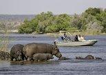 Escapada de un día ampliada a Chobe desde las Cataratas Victoria. Livingstone, ZIMBABUE