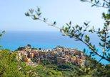 Recorrido en barco por las Cinque Terre para preparar pesto y tomar almuerzo de La Spezia. Cinque Terre, ITALIA