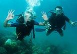 Curso de submarinismo scuba para principiantes en Paraty. Paraty, BRASIL