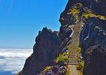 Picos de Madeira - Caminhada pelas montanhas. Funchal, PORTUGAL