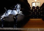 Visita guiada histórica de Jerez con espectáculo de caballos y visita a bodega. Cadiz, ESPAÑA