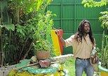 Excursión por la costa Falmouth: Experiencia Bob Marley. Trelawny, JAMAICA