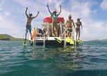 Snorkeling Tour to Vieques Island. Fajardo, PUERTO RICO