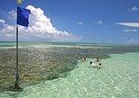 Visita de día completo a la playa de Paripueira y las piscinas naturales en Maceió,
