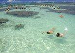 Maragogi Beach Gales Reef,