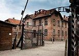 Auschwitz-Birkenau y la mina de sal de Wieliczka desde Cracovia. Cracovia, POLONIA