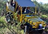 African Ambush Jeep Tour 1hr, Flagstaff, AZ, ESTADOS UNIDOS