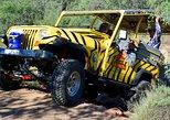 1-Hour Jeep Tour of Camp Verde's Out of Africa Wildlife Park, Flagstaff, AZ, ESTADOS UNIDOS