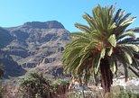Full Day Lazy Wednesdays from Las Palmas. Gran Canaria, Spain
