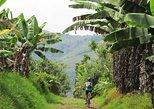 Tour de 7 días en bicicleta y café de Pereira a Cocora Valley. Pereira, COLOMBIA