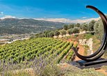 4-Hour Provence Organic Wine Tasting Tour from Nice. Niza, FRANCE