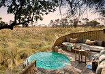 Aventura de 6 días en un safari de lujo privado en Tanzania (todo incluido). Arusha, TANZANIA