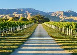 Marlborough Wine Tour and Tasting Full-Day Tour from Blenheim. Picton, New Zealand