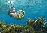 Excursão no litoral de Nassau: Aventura de Snorkel nas Bahamas. Nassau, BAHAMAS