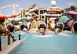 Viagem Particular de um dia a Dubai Yas Waterworld e ao Ferrari World,