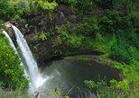 Papeete Inner Island Full-Day Jeep Safari. Papeete, TAHITI