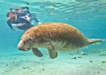 Crystal River Snorkeling, Everglades Airboat, Homosassa Tour,
