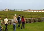 Bordeaux Vineyards Wine Tasting Half-Day Trip. Bordeaux, FRANCE