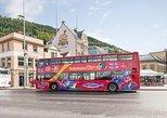 Passe de 24 horas para a excursão com várias paradas na cidade de Bergen. Bergen, NORUEGA