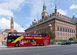 Excursão turística pela cidade de Copenhagen em ônibus panorâmico,