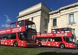 Visita turística por Auckland con paradas libres. Auckland, NUEVA ZELANDIA