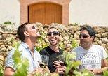Escapada privada de un día desde Barcelona: Cata de vinos en los viñedos,