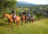 Messina: Horseback Riding and Sicilian Lunch Private Farm Tour. Mesina, ITALY