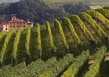 Private Tour: Piedmont Wine Tasting of the Barolo Region. Turin, ITALY