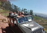 Recorrido de medio día para grupos pequeños en vehículos 4x4 por Poncha, las montañas y los viñedos, safari por Cabo Girão. Funchal, PORTUGAL