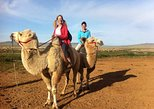 Semi-Gobi Desert Tour with Camel- or Horseback-ride and Lunch. Ulan Bator, MONGOLIA