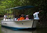 Recorrido en barco por el manglar de Damas desde Manuel Antonio. Quepos, COSTA RICA