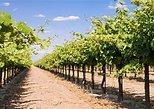 Excursión vinícola en Fredericksburg. Austin, TX, ESTADOS UNIDOS