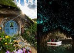 Hobbiton Movie Set y Waitomo Glowworm Caves de Auckland. Auckland, NUEVA ZELANDIA