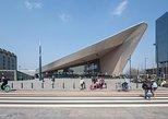Recorrido cultural a pie en Róterdam. Rotterdam, HOLANDA