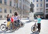 Excursión en bicicleta por la ciudad de Viena,