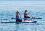 Observação de golfinhos e peixes-boi de excursão de stand Up Paddle, Daytona Beach, FL, ESTADOS UNIDOS