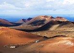 Excursión al volcán de Lanzarote y la región vinícola desde Fuerteventura.. Fuerteventura, ESPAÑA