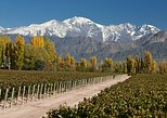 4-day trip to Mendoza by air, Buenos Aires, ARGENTINA