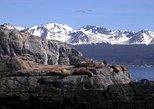 Beagle Channel Yacht Sailing Tour from Ushuaia, Ushuaia, ARGENTINA