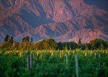 Ruta vinícola de un día en Cafayate desde Salta,