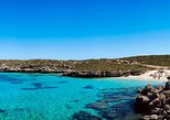 Rottnest Island Roundtrip Fast Ferry from Hillarys Boat Harbour, ,