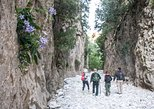 Hike the Gorgeous Gorge, Kalamata, GRECIA
